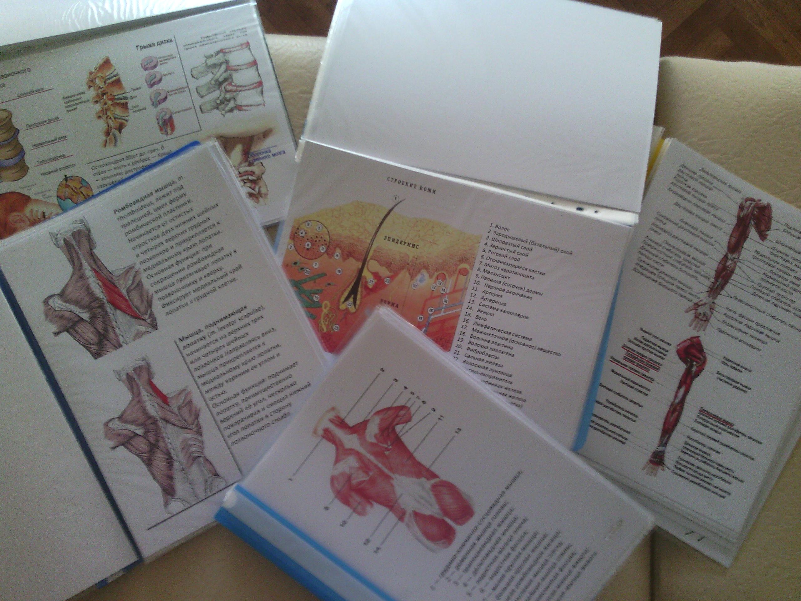 Презентации рефераты и литература по детскому массажу Литература по детскому массажу